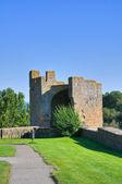 Mura fortificate. tuscania. lazio. italia. — Foto Stock