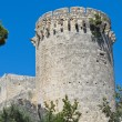 Tower of Matilde of Canossa. Tarquinia. Lazio. Italy. - Foto de Stock