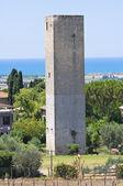Ortaçağ kulesi. Tarquinia. Lazio. İtalya. — Stok fotoğraf