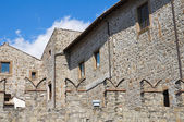Historical palace. Viterbo. Lazio. Italy. — Stock Photo