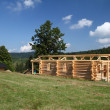 Building wooden cottage — Stockfoto