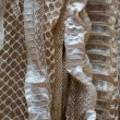 Royalty-Free Stock Photo: Snakeskin