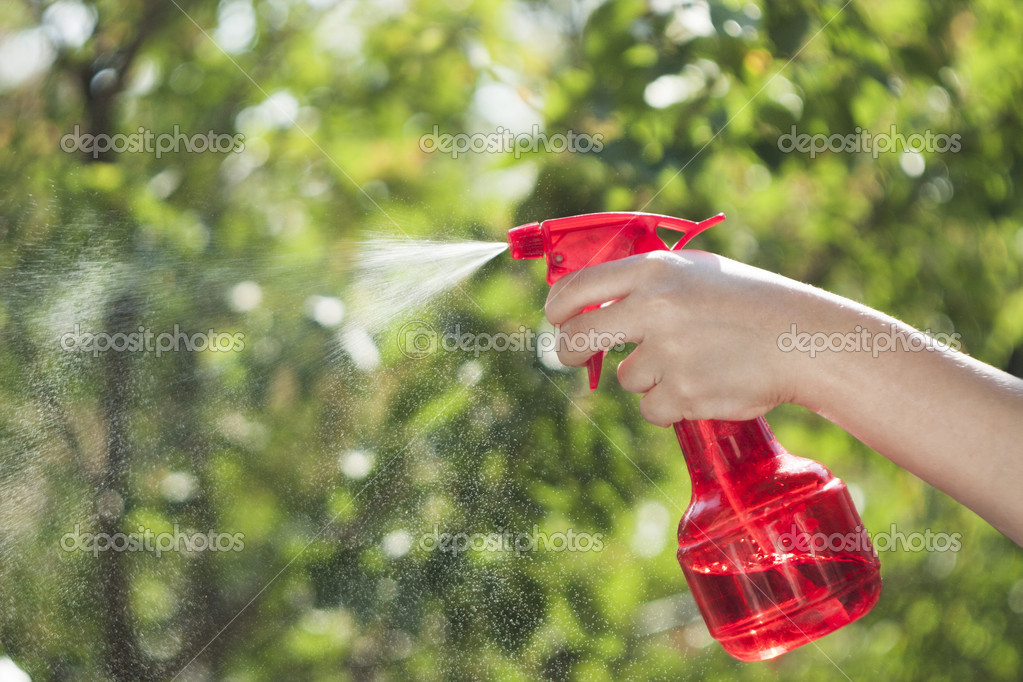 Spray with water in a hand against greens — Stock Photo #11221900