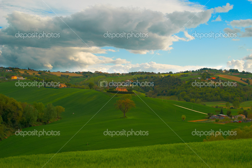 Green field of  golf course on a cloudy day Italy — Stock Photo #10833792