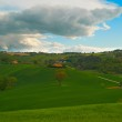 Green field of golf Italy — Stock Photo