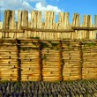Archaeological Museum in Poland Biskupin wooden defensive wall — Stock Photo