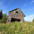 Old barn ready to fall — Stock Photo