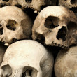 Stock Photo: Stack of skulls