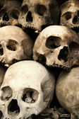 Stack of skulls — Stock Photo