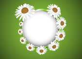 Background with daisies flowers — Stock Vector