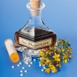 Foto de Stock  : Hypericum plant and extract and homeopathic pills