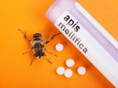 Apis Mellifica homeopathic medication and bee — Stock Photo