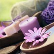 Violet dayspa nature set — Stock Photo #11114430