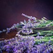 Royalty-Free Stock Photo: Fresh lavender