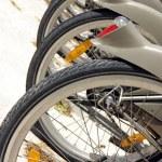 ������, ������: City bikes