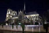 Katedra notre-dame w nocy — Zdjęcie stockowe