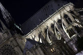 Details of Notre-Dame cathedral by night — Stock Photo