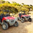 Couple of Modern Quads - Stock Photo