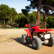 Stock Photo: Quad in Woods