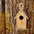 Royalty-Free Stock Photo: Bird Wooden House
