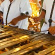 Mexican musicians playing a wooden marimba - Stock Photo