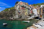 Harbor of Riomaggiore, Cinque Terre, Italy — Stock Photo