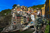 Harbor view in Riomaggiore, Cinque Terre, Italy — Stock Photo