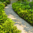 Stock Photo: Stone path in landscaped home garden