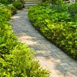 Stone path in landscaped home garden — Stock Photo #11551189