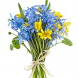 Bouquet of fresh spring flowers — Stock Photo