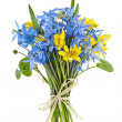 Bouquet of fresh spring flowers — Stockfoto
