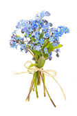 Bouquet of forget-me-nots — Stock Photo
