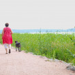 Woman with dog, walking on gravel road, at summer — Stock Photo