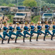 Soldiers demonstrate ceremonial movements — Stock Photo