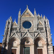 Cathedral in Siena, Italy. Duomo di Siena — Stock Photo