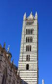 Turm des doms in siena, italien. duomo di siena — Stockfoto