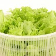 Stock Photo: Leaf lettuce