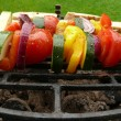 Grilled vegetables skewers and roasted bread — ストック写真