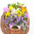 Stock Photo: Flower basket
