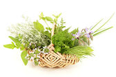 Kitchen herbs — Stock Photo