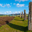 Ring of Brodgar — Foto de Stock