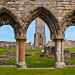 St Andrews cathedral — Stock Photo