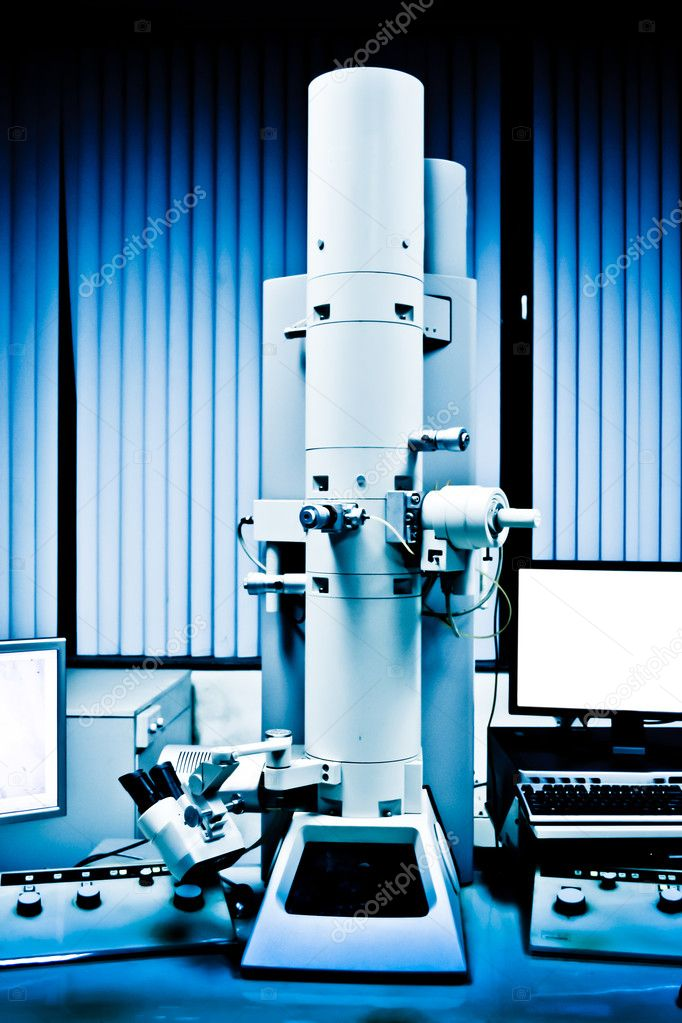 term paper on transmission electron microscope Abstract correlative fluorescence microscopy combined with scanning transmission electron microscopy (stem) of cells fully immersed in liquid is a new methodology with many application areas.