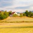Farmhouse on glade - Stockfoto