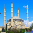 Selimiye mosque — Stockfoto #11827955