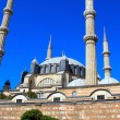 Selimiye mosque — Stock Photo #11828198