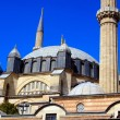 Selimiye mosque — Stockfoto #11828202