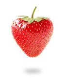 Fresa fresca sobre fondo blanco — Foto de Stock
