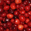 Sweet cherries texture — Stock Photo