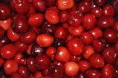 Sweet cherries texture — Stock Photo